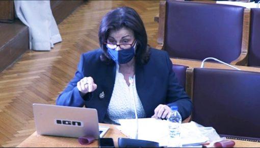 «Μύθοι και ερωτήματα για το ασφαλιστικό». Τοποθέτηση στην Επιτροπή συστήματος κοινωνικής ασφάλισης